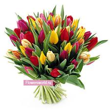 35 assorted tulips